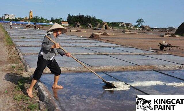 Lót màng HDPE cho ruộng muối